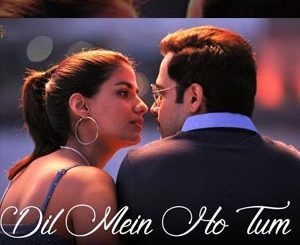 Dil Mein Ho Tum Lyrics - Cheat India