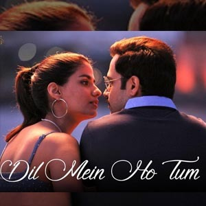 Dil Mein Ho Tum Lyrics - Cheat India