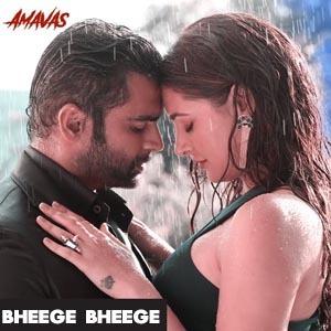 Bheege Bheege Lyrics - Amavas
